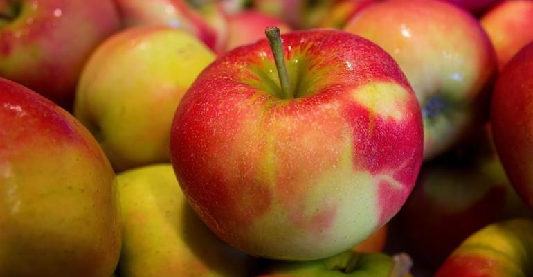 JUTRO: Jabłka dla mieszkańców