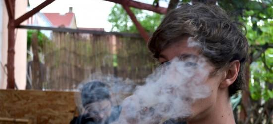 Trzej mieszkańcy gminy Kołaczyce, podejrzewani o posiadanie narkotyków