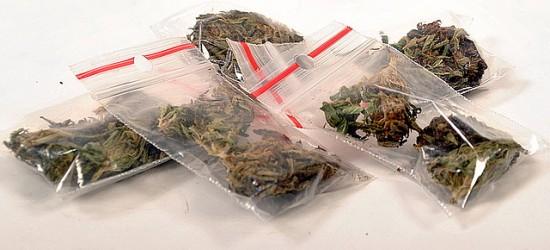 21-latek sprzedawał marihuanę i amfetaminę. Grozi mu do 10 lat więzienia