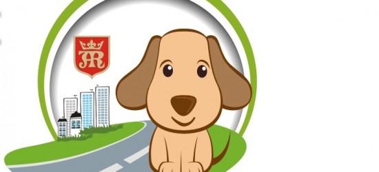 Miasto zapobiega bezdomności zwierząt. Okazja do bezpłatnego zaczipowania psów