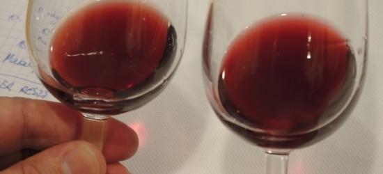 PAW ogłasza nabór do Studium Praktycznego Winiarstwa 2017 (ZDJĘCIA)